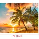 Photography Backdrops for Photographers 7x5ft Summer Beach Photo Background Tropical Tree Sunset Photo Booth Backdrop