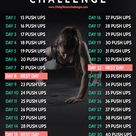Fitness Workouts