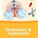 Kinder Experiment Lungen Modell