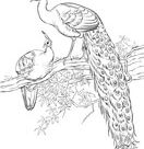 Roadrunner coloring pages | Free Coloring Pages