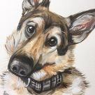 Custom pet portraits, Original and digital pet portrait, handpainted animal portrait, original Custom pet portrait, dog gift, pet memorial