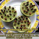 Natural Mosquito Repellant