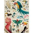 World of Birds 750 Piece Family Puzzle
