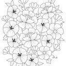 Flower Free Adult Coloring Sheet   Woo Jr. Kids Activities