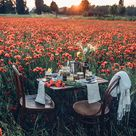 Gluten free Poppyseed Granola   A Picnic in a field of poppies