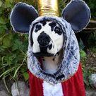 Nutcracker Suit: Rat King Costume by TKC Cozy Pawz