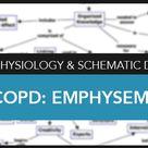 Chronic Obstructive Pulmonary Disease (COPD) Nursing Care Management
