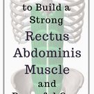 What You Need to Know to Build a Strong Rectus Abdominis Muscle and Powerful Core
