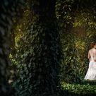 WEDDING PHOTOGRAPHER   Wedding Photographer Mariusz Majewski