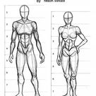 How to Draw the Human Anatomy - Human Proportion Guide