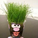 Plant Crafts