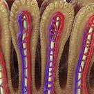 Intestinal Villi, artwork - Stock Image - C020/4465