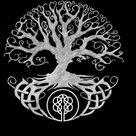 Vikings tv show tee shirts -Liberal Tree