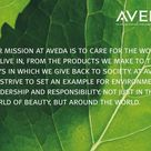 We are an Aveda Concept Salon.  We use all Aveda products and hair color.