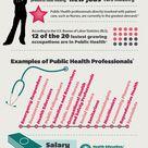The Anatomy of a MPH Public Health Degree