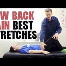 Stretches for Low Back Pain - Dr.Berg