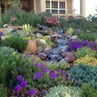 Wildscaping: Landscape for healthy habitat