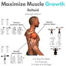 The 4 Best Exercises To Create 3D Shoulders - GymGuider.com