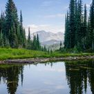 Mount Revelstoke BC by Roland Lamarre on 500px