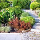 Top Landscape Edging Ideas to Help Make Your Garden Amazing