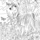 Baby Deer - Printable Adult Coloring Page from Favoreads Coloring book pages for adults and kids Coloring sheets Coloring designs