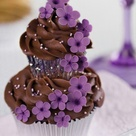 Pictures Of Cupcakes
