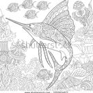 Coloring Page Adult Coloring Book Idea Stock Vector Royalty Free 1055824877
