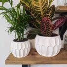 Geometric Large Planter   Modern & Minimalist Indoor Plant Pot