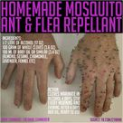 Flea Repellant