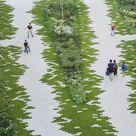 Gallery of The Garden / Eike Becker Architekten  - 5