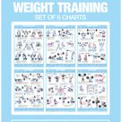 Weight Training Posters Barbell Dumbbell Exercise Charts | Etsy