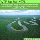 Planet Earth Facts
