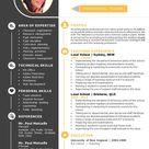 2 in 1 modern teacher Word resume