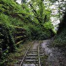 Oregon Zoo Railway Extension