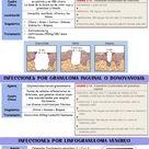 Úlceras genitales 3
