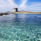 Metal Poster La Pelosa A Wonderful Beach Into The North Of Sardinia ...