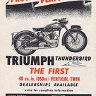Triumph Dealer