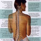 Chiropractic Care-Why Your Health Will Thank You