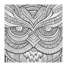 Coloring Poster: Symmetric Wing Arches Coloring Art, 44x56in.