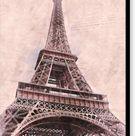 Eiffel Tower - Canvas Print - 13 x 16 / Black / Glossy