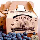 Home   Falconglen Organic Farms