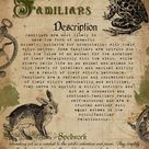 Book of Shadows Familiars