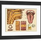 Framed Print. Diagram of Mouth