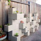 Homemade cinder block planter wall.