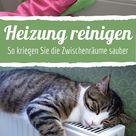 Heizkörper reinigen: So kriegen Sie die Zwischenräume sauber