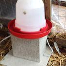 Chicken Water Heater