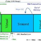 Java and .NET Virtual Machine Performance Tuning