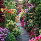 111 Gartenwege gestalten Beispiele - 7 tolle Materialien für den Boden im Garten!