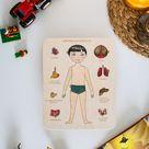 Wooden Puzzle  Human body  Internal organs  Montessori  | Etsy