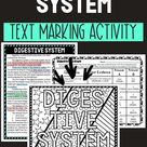 Digestive System Activity - Color By Number